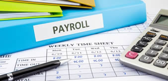 I can assist you in implementing the controls necessary to ensure a reliable, efficient, and effective payroll system.